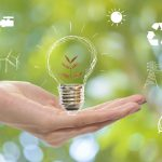 5 Easy Ways To Make Your Business Greener