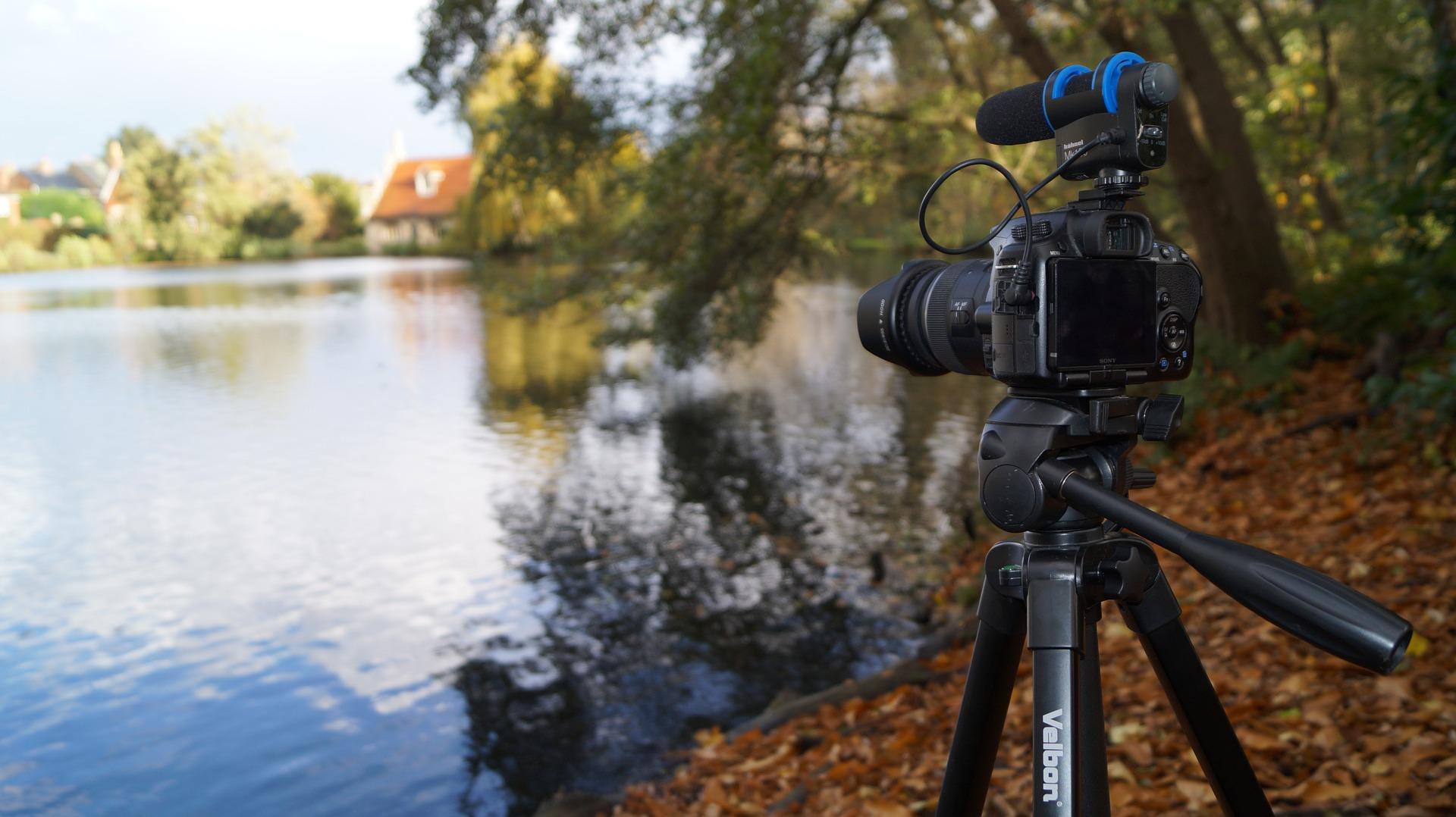 evergreen video