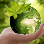 Green Marketing: How to Effectively Promote Your Business's Eco-Conscious Efforts